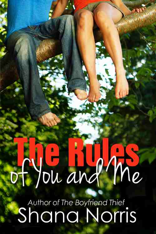 The Rules of You and Me by Shana Norris